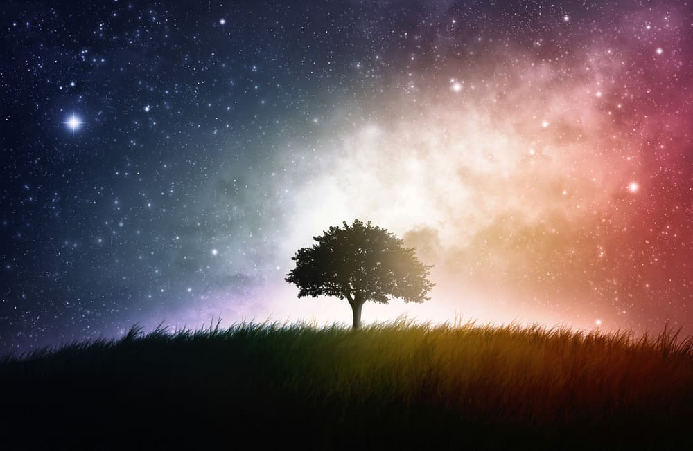 Why is it important to experience a spiritual awakening