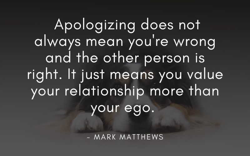 apologizing when you did nothing wrong quote